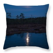 Moon Over Wetlands Throw Pillow