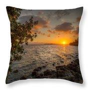 Morning At The Mangroves Throw Pillow