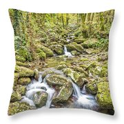 Mountain Stream In Autumn Throw Pillow