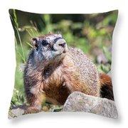 Mr. Marmot Throw Pillow