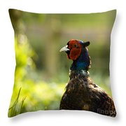 Mr Pheasant Throw Pillow