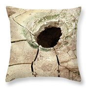 Mudpot Throw Pillow