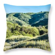 Muir Woods Forest Drive By Nature Near San Francisco Throw Pillow