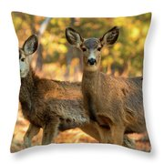 Mule Deer In The Woods Throw Pillow