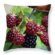 My Blackberries Throw Pillow