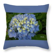 My Blue Hydrangeas Throw Pillow