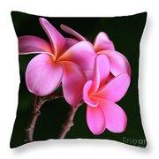 Na Lei Pua Melia Aloha He Ala Nei E Puia Mai Nei Pink Plumeria Throw Pillow