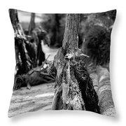 Nature Scenes Around Hunting Island South Carolina Throw Pillow