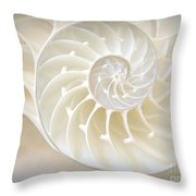 Nautilus 3by4 Throw Pillow