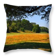Ncdot Wildflowers Throw Pillow