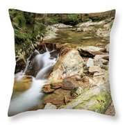 New England Waterfall Throw Pillow