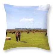 New Forest - Hampshire - Uk Throw Pillow