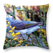 Noisy Miner In Oz Throw Pillow