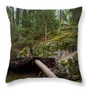 Old Forest In Kauppi Tampere Throw Pillow