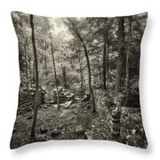 Old Stone Fort Throw Pillow