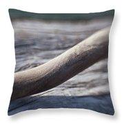 Olympic Peninsula Coast Throw Pillow