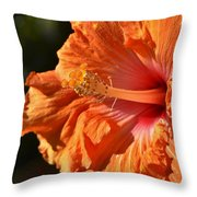 orange Hibiscus blossom Throw Pillow