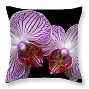 2 Orchids Throw Pillow