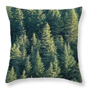Oregon, Cascade Mountain Throw Pillow