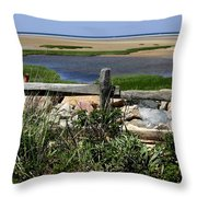 Paines Creek Throw Pillow