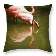 Paired Throw Pillow