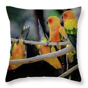 Parrots Throw Pillow