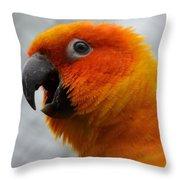 Parrott Throw Pillow