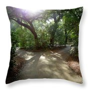 2 Paths  Throw Pillow