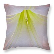 Peach Angel's Trumpet At Pilgrim Place In Claremont-california  Throw Pillow