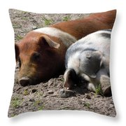 Pigs Throw Pillow