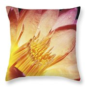 Pink Water Lily Throw Pillow by Bill Brennan - Printscapes