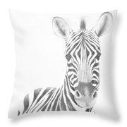 Plains Zebra Throw Pillow