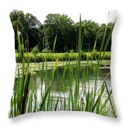Pond At Beaver Island State Park In New York Throw Pillow