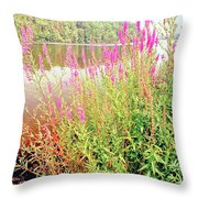 Pond In The Bershire Mountains, Massachusetts Throw Pillow