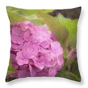 Purple Hydrangea At Rainy Garden In June, Japan Throw Pillow
