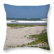 Railroad Vine And Sea Oats On The Atlantic In Florida Throw Pillow