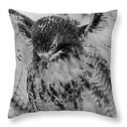 Red-tailed Hawk In Snow Throw Pillow