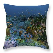 Reef Scene With Coral And Fish Throw Pillow by Mathieu Meur