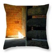 Reeves Homeplace Throw Pillow