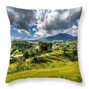 Rice Terrace Throw Pillow