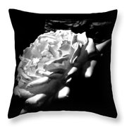 Roses In Moonlight 4 Throw Pillow