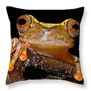 Ross Allens Treefrog Throw Pillow