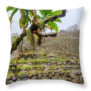 Ruins Of  Machu Picchu Throw Pillow