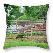 Rustic 013 Throw Pillow