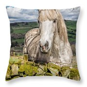 Rustic Horse Throw Pillow