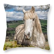 Rustic Horse Throw Pillow