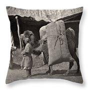 Samarkand: Transport, C1870 Throw Pillow