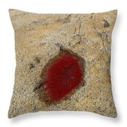 Sammo Island Throw Pillow
