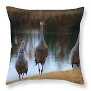 Sandhill Crane Family By Pond Throw Pillow