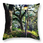 Savannah Spring Perspective Throw Pillow